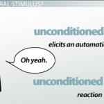 Neutral Stimulus