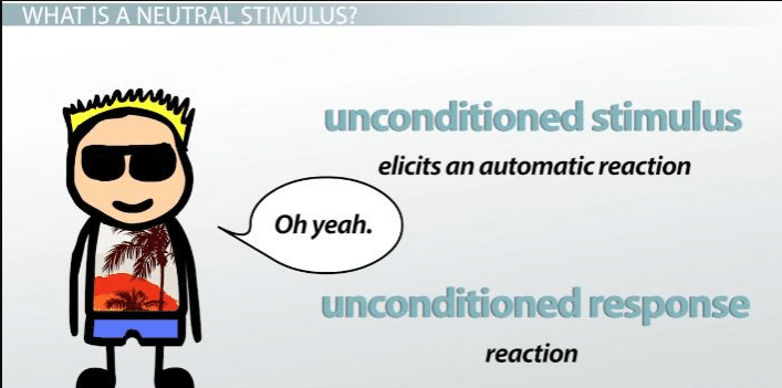 Neutral Stimulus: Definition & Examples