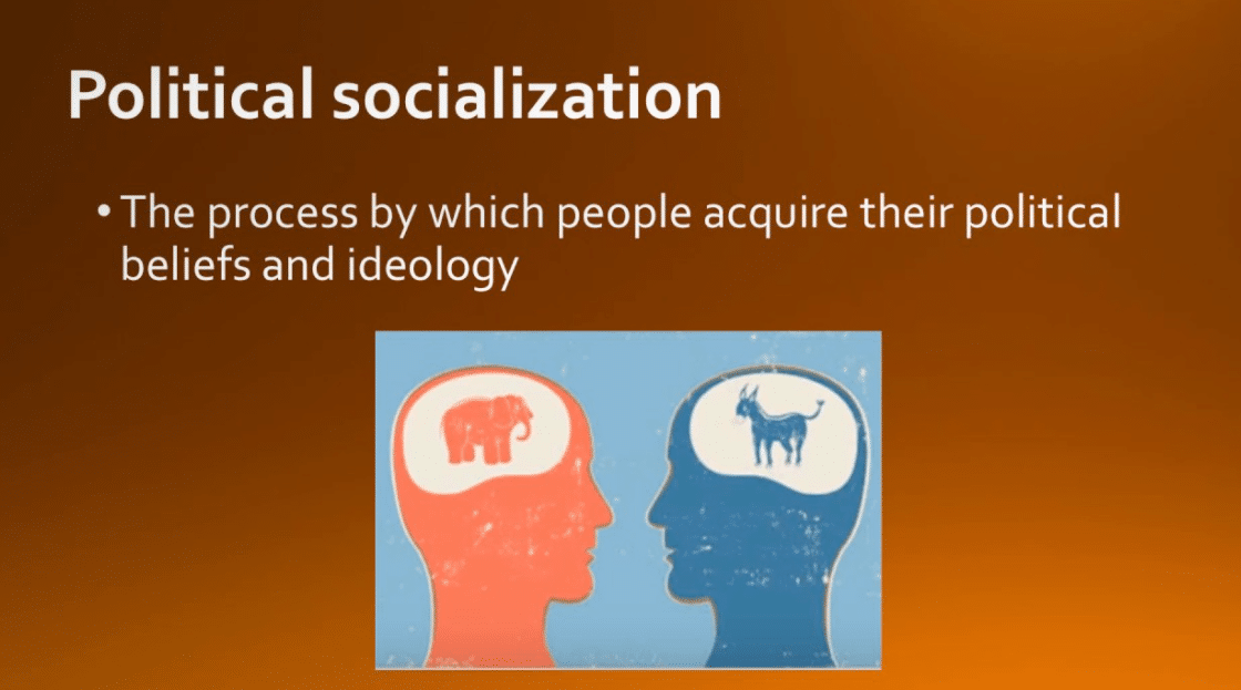 What is Political Socialization?